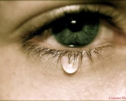 слеза крионика трудности жестокость